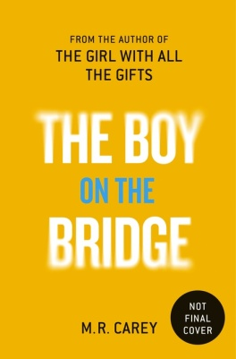 Book cover: The Boy on the Bridge - M R Carey (text on yellow)