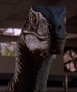Film still: velociraptor from Jurassic Park