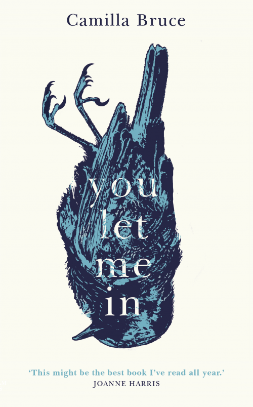 Book cover: You Let Me In - Camilla Bruce