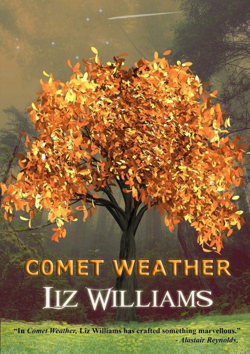 Book cover: Comet Weather - Liz Williams