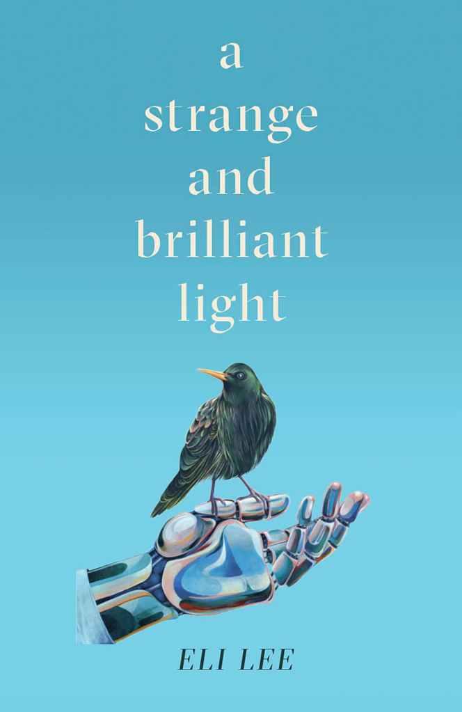 Book cover: A Strange And Brilliant Light  - Eli Lee